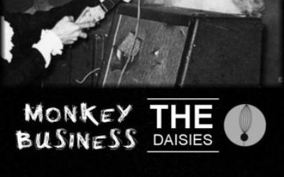 Monkey Business & The Daisies (SH/CH)
